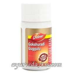 Гокшуради Гуггул 40 Таб( для здоровья почек )-Gokshuradi Guggule Dabur