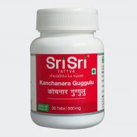 Канчнар гуггул- 30 таб Kanchnar Guggul Sri Sri Ayurveda